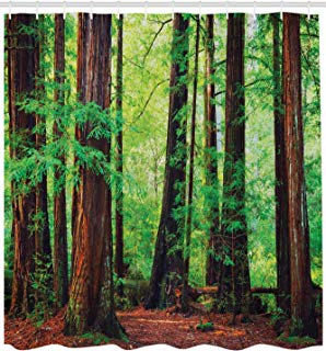 """Ambesonne Woodland Shower Curtain, Redwood Trees Northwest Rain Forest Tropical Scenic Wild Nature Lush Branch, Cloth Fabric Bathroom Decor Set with Hooks, 84"""" Extra Long, Brown Green"""