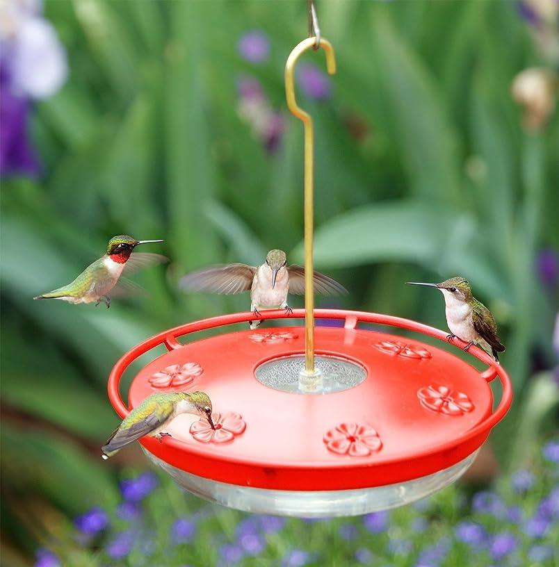 Aspects ASPECTS441 HighView Excel Bird Feeder