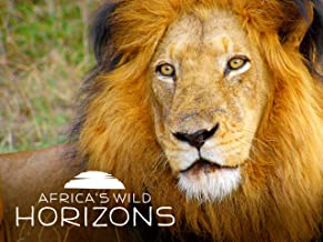 Best wild earth africa Reviews