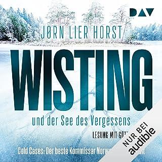 Wisting und der See des Vergessens: Cold Cases 4