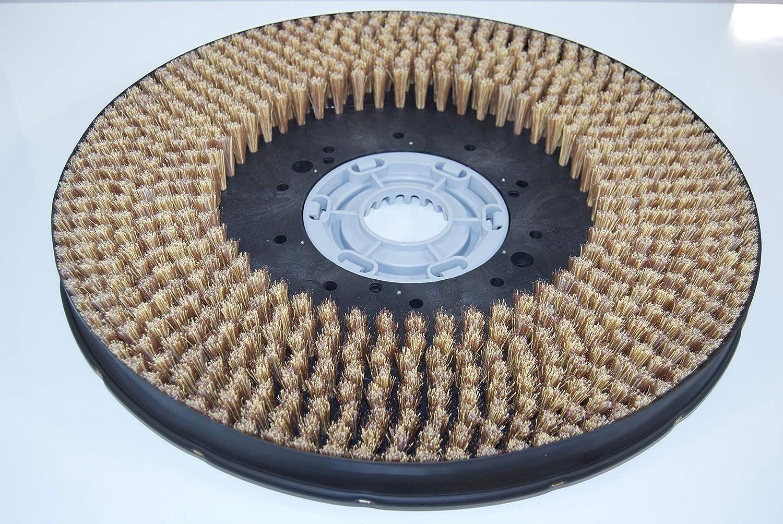 Schrubbbürste für für für Hako B 1050, Bürste, Tellerbürste B07NNV3TFQ 5c5a3d