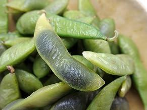 黒豆枝豆 1kg(500g×2) 【冷凍】 (1kg(500g×2))