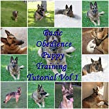 Basic Obedience Puppy Training Tutorial Vol 1