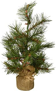 Best decorative pine trees Reviews