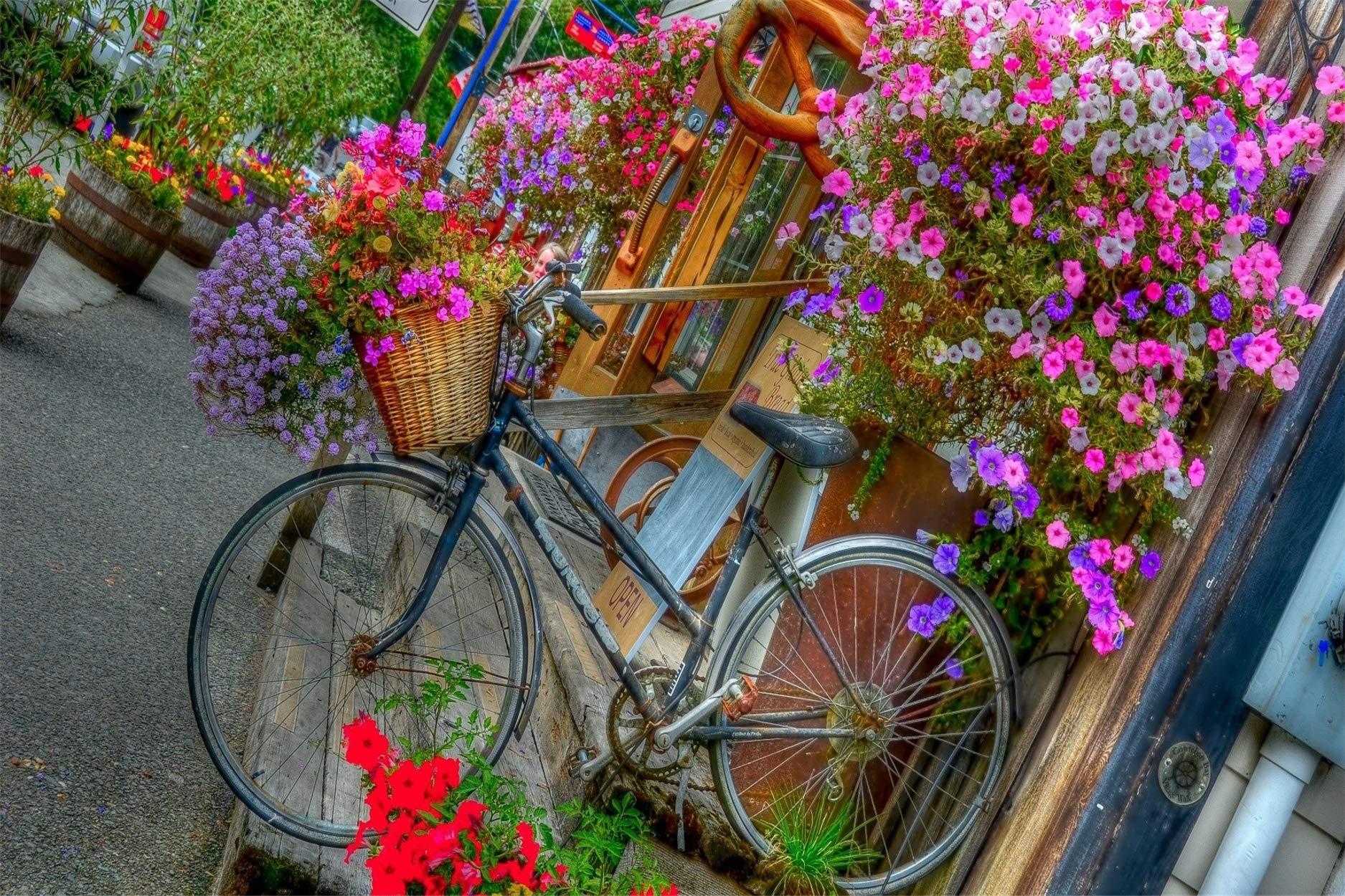 Msliuhuahua 3D DIY Bicicleta Y Pintura De Imagen De Flores sobre Lienzo Pintura Al Óleo Digital por Números 40X50 Cm Regalo: Amazon.es: Juguetes y juegos