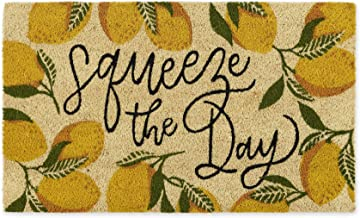 DII Spring/Summer Doormat, 18x30x0.5, Squeeze The Day