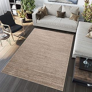 Tapiso Alfombra de salón Moderna colección Sari–Color marrón Gris de café Diseño Plana Arena–fácil Mantenimiento, Polipropileno, café, 60 x 100 cm