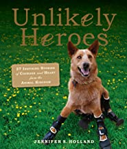 Unlikely Heroes (Unlikely Friendships)