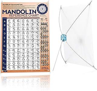 Mandolin Chord Chart Laminated of Popular Mandolin Chords   Mandolin Fretboard Notes and Circle of Fifths, 11'' x 15'' Man...