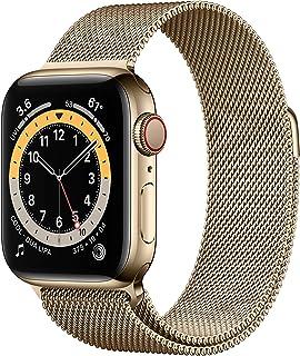AppleWatch Series6 (GPS+Cellular) • 40mm rostfri stålboett guld • milanesisk loop guld
