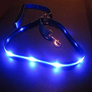 Blazin' Safety LED Dog Leash - USB Rechargeable Flashing Light, 4Ft & 6 Ft, Water Resistant – Avoid Danger