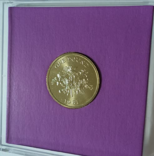 Lily & Shield of the Bailiwick 1981 Guernsey Commemorative £1 Coin (BU) Collector Gift Set in Display Case