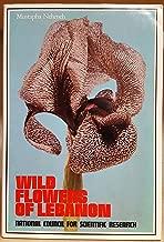 Best wild flowers of lebanon Reviews