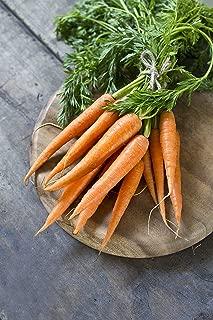 Danvers 126 Half-Long Carrot Seeds- Non-GMO - 5 grams
