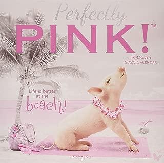Graphique Pretty In Pink Hangable Office Wall Calendar - 16-Month 2020 Calendar, 12