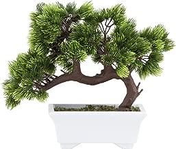 japanese houseplants