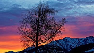 Evening Sunrise Morning Beautiful Nature Wall Art Canvas Print Decor by CanvasBy 100x56cm / 3.5cm Deep