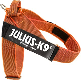 Julius K9IDC Color & Gray