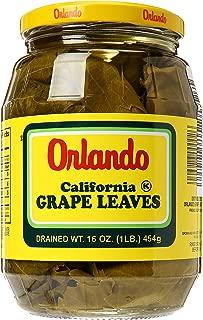 Orland Grape Leaves