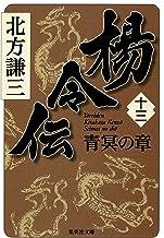 表紙: 楊令伝 十三 青冥の章 (集英社文庫)   北方謙三