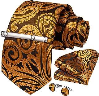 DiBanGu Men's Necktie Handkerchief Silk Paisley Floral Tie Pocket Square Cufflink Set