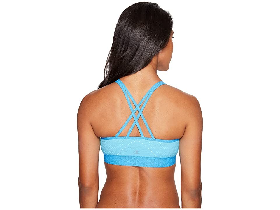 Champion The Infinity Mesh Sports Bra (Turquoise Waters/Blue Mist/Quarry Blue Heather) Women