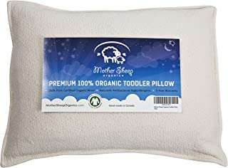 Organic Wool Toddler and Kids Pillow, Hypoallergenic, 14x19
