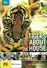 Tigers About the House | Documentary | NON-USA Format | PAL | Region 4 Import - Australia