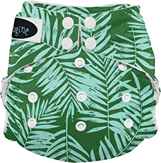 Best imagine cloth diapers Reviews