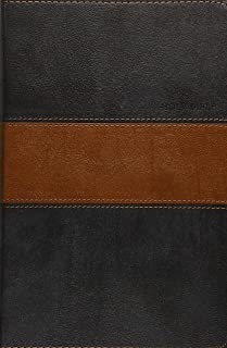 Holy Bible NLT, Personal Size Large Print edition, TuTone (Red Letter, LeatherLike, Black/Tan)