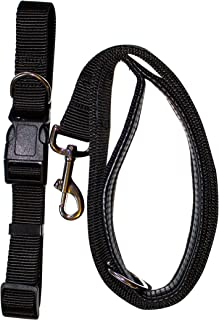 Gordon Wear Not Just Another Dog Leash (+ collar) - Black/Large