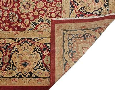 Noori Rug Vegetable dyed Versailles Anmol Agra Area Rug, Red