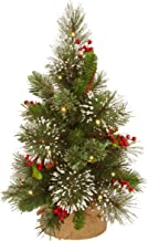 National Tree Company Pre-lit Artificial Mini Christmas Tree Includes Small White LED Lights, Cones, Red Berries, Snowflak...