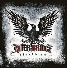 alter bridge rise today