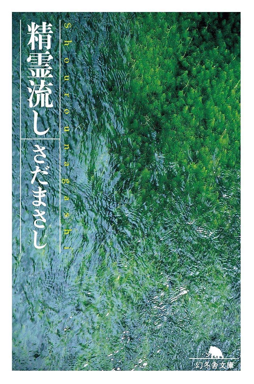 悲しむ論理的役員精霊流し (幻冬舎文庫)