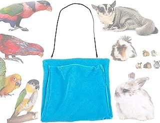 Best flying squirrel pocket pet Reviews