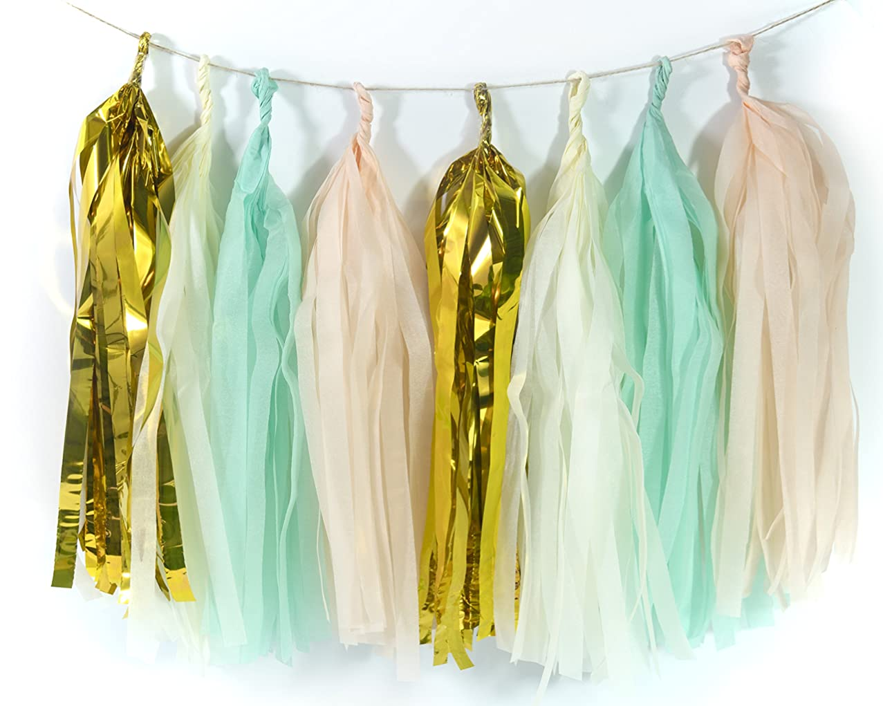 ALL in ONE 20pcs Tissue Paper Tassels Tassel Garland Banner for Wedding Baby Shower Party Holiday Event Decoration (Mint+Peach+Ivory+Gold) xixqybmlso054