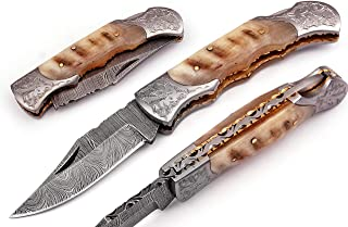 Hand made Damascus steel blade Pocket knife with leather sheath 5170 (Ram) knives for men best gift