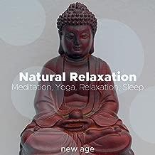 effortless presence meditation