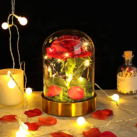 E-MANIS Kit de Rosas,La Bella y La Bestia Rosa Encantada,Elegante Cúpula de Cristal con Base cobre Luces LED,Beauty and Regalos Magicos Decoración para Día de San Valentín Aniversario Bodas