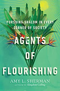 Agents of Flourishing: Pursuing Shalom in Every Corner of Society (Made to Flourish Resources)