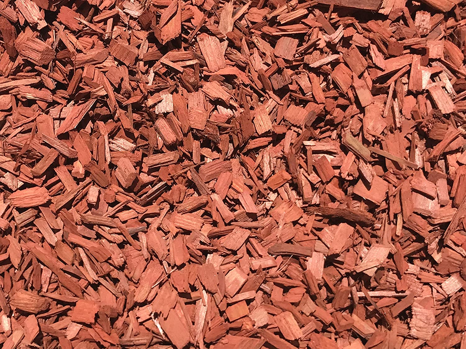 MIGHTY109 Raging Red Colored Wood New Free Shipping Chip Bombing new work 42 Mulch Colore - Quarts