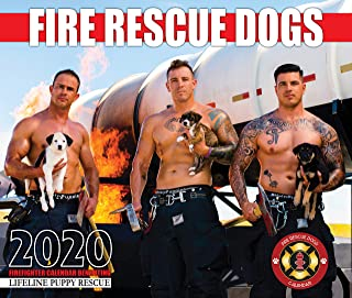 2020 Fire Rescue Dogs Calendar
