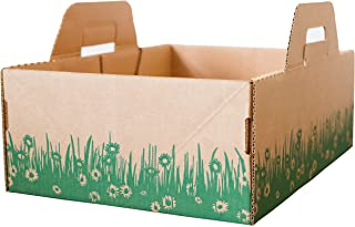 Ten Second Litter Boxes (10 Litter Boxes- 10 Week Supply)
