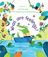 What are Feelings? (Lift-the-Flap First Questions & Answers)