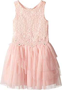 Lace Dress with Tulle and Flowers (Little Kids/Big Kids)