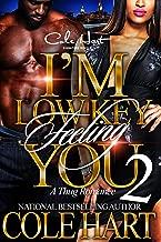 I'm Low Key Feeling You 2: An Urban Romance Novel