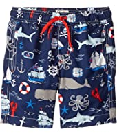 Hatley Kids - Vintage Nautical Swim Trunks (Toddler/Little Kids/Big Kids)