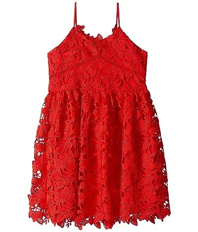 Bardot Junior Sonya Lace Dress (Big Kids) (Lollipop) Girl