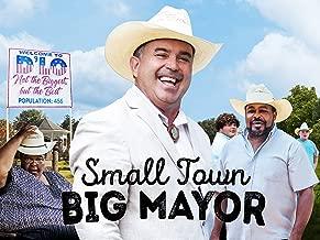 Best d lo mississippi mayor Reviews